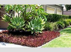 Gardening and Landscaping for Perth Homes Very Ventura