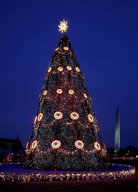 christmas tree mall national washington usa dc year places spend peace commons america pathway wikimedia localadventurer tif need know