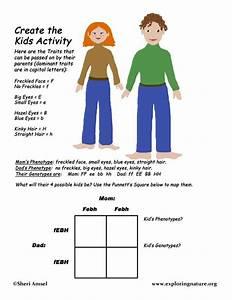 Genetics Activity - Create The Kids