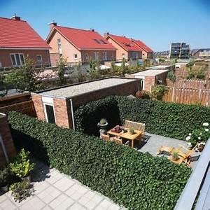 Schmale Bäume Für Kleine Gärten : die fertighecke schmale hecken f r kleine g rten ~ Michelbontemps.com Haus und Dekorationen