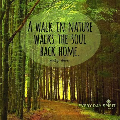 image result for quotes about jungle forest earth nature inspirational quotes nature quotes