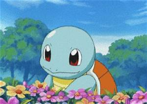 Squirtle GIFs - Find & Share on GIPHY