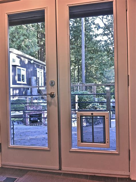 build  dog door  sliding glass door theydesignnet