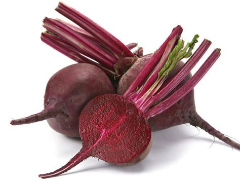 rote beete aussaat rote beete
