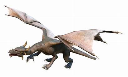 Dragon Fire Transparent Clipart Pngpix 2000 Wings