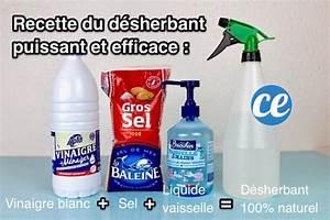 Vinaigre Blanc 14 Desherbant : comment tuer les mauvaises herbes et emp cher qu 39 elles ~ Melissatoandfro.com Idées de Décoration