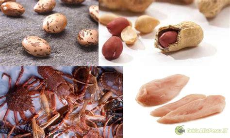 alimenti con aminoacidi cibi liquidi esche ed inneschi carpfishing