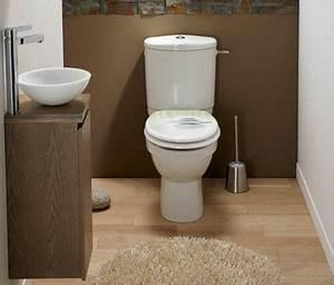 Couleur peinture et rangement pour wc et toilette for Sol beige quelle couleur pour les murs 11 photos et idees wc mur peinture 606 photos