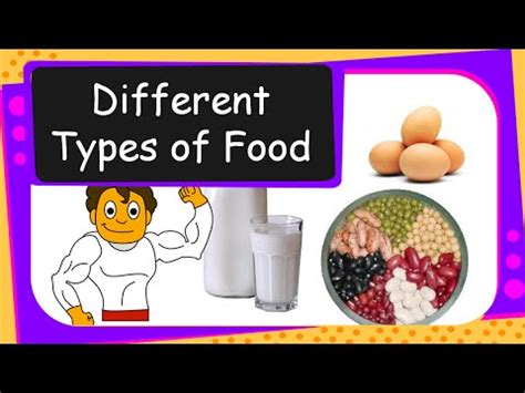 different types of cuisine science human food different types of food we eat