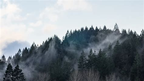 fog clouds rolling  mountain stock footage video