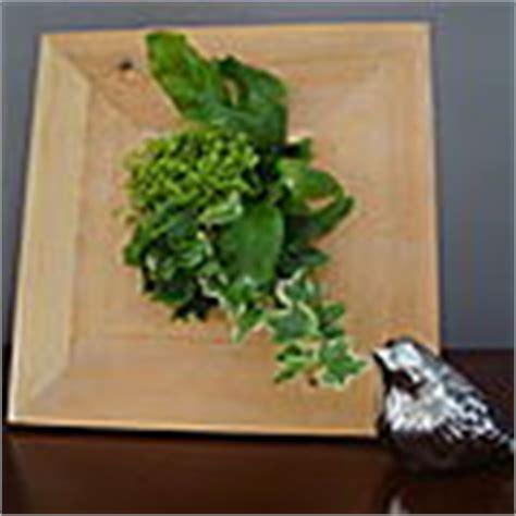 deco vegetale tous les posts et blogs sur deco vegetale canalblog