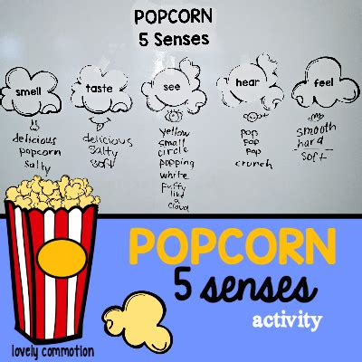 a delicious way to teach about five senses best of 865   4dac6e837f62271efa08f02623ccc801