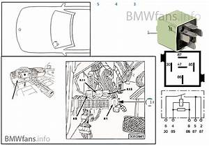 Bmw 316i User Wiring Diagram