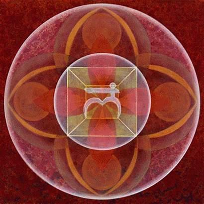 Chakra Chakras Motion Sono Parliamo Svadhistana Desideri