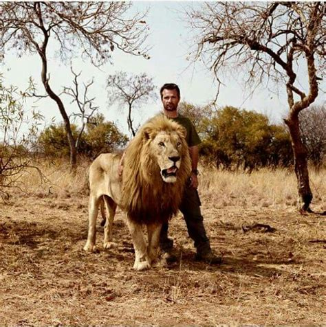 25 best ideas about kevin richardson on the