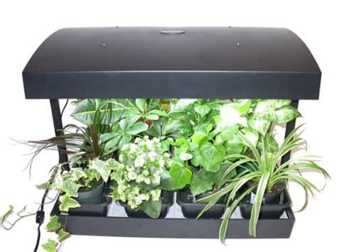 indoor garden lights photograph 1001 gardens gt products gt