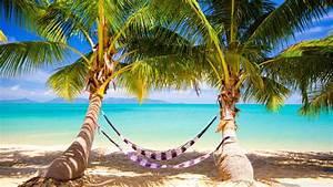 Tropical beach hammock wallpaper