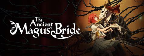 Ancient Magus Bride Wallpaper Stream Watch The Ancient Magus 39 Bride Episodes Online Sub Dub