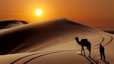 hace  anos el sahara  era zona arida sino