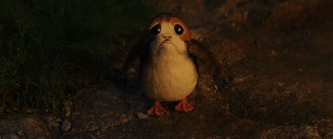 Star Wars Cute Wallpaper The Last Jedi Gif By Star Wars Find Share On Giphy
