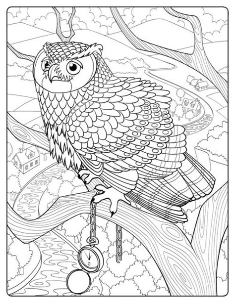 Jada Fitch Illustration | Owl coloring pages, Bird