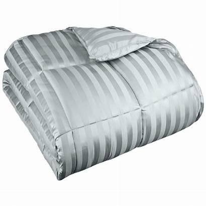 Comforter Down Stripe Alternative Season Wide Egyptian