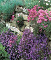 Pflanzen Für Trockenmauer : unser garten hanglagen 05 2002 ~ Orissabook.com Haus und Dekorationen
