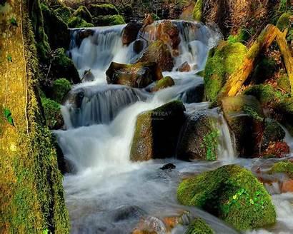 Waterfall Screensaver Screensavers Waterfalls Wallpapers Desktop Backgrounds