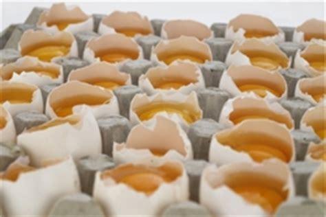 Wie Bewahrt Man Eier Auf? Ichkocheat