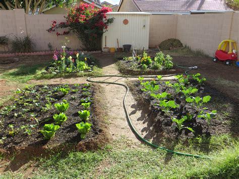 How To Build A Backyard Garden how to build a backyard garden part 2 dally s vintage days
