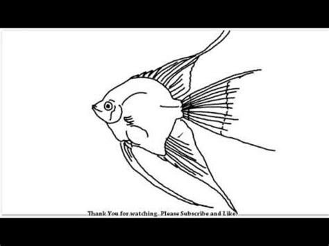draw  aquarium fish youtube