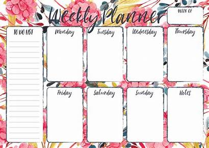 Weekly Planner Botanica Planners Options Note