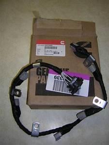 Buy Cummins L10 And M11 Internal Injector Wiring Harness