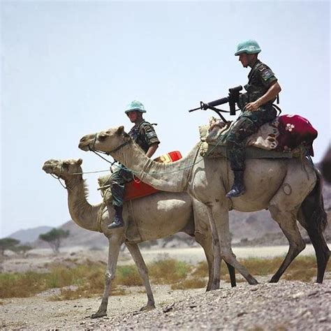 cavalry modern horses war battle against trained highly still soldiers wikipedia eritrea instincts lay completely enough during close use