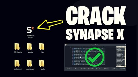 synapse  working synapse  cracked scripts