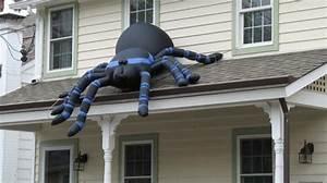 Faire Fuir Les Araignées : comment lutter contre les araign es la maison ~ Melissatoandfro.com Idées de Décoration