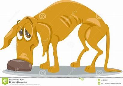 Dog Cartoon Sad Homeless Illustration Animal Vector