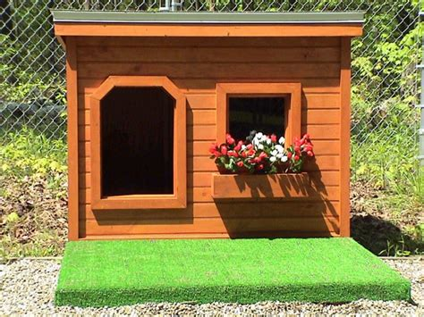 top    coolest dog house designs