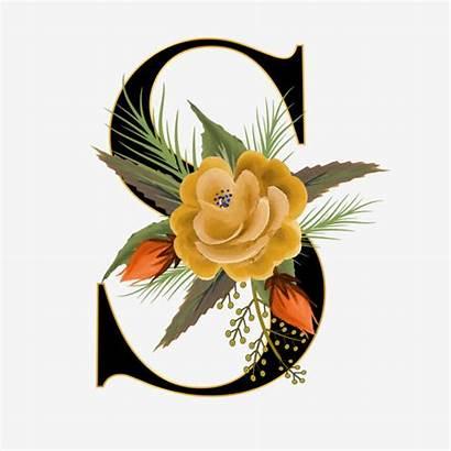 Alphabet Floral Flower Font Letters Watercolor Flowers