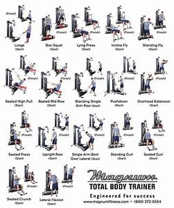 Weider 2980 Workout Chart