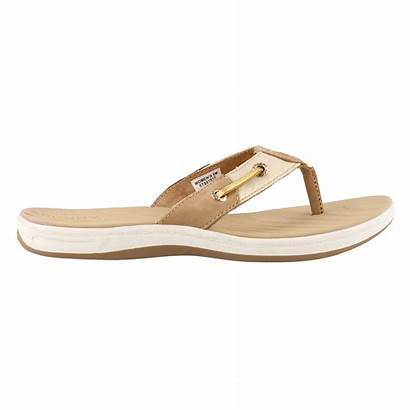 Sandals Sperry Thong Surf Seabrook Shoes Clearance
