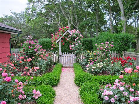 cottage garden design with roses wilson garden