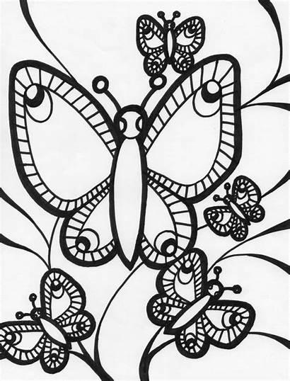 Colorear Mariposas Dibujos Coloring Butterfly Adults Imprimir
