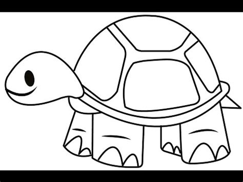 draw  tortoise easy  simple steps