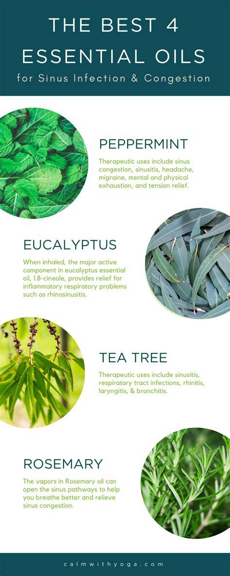 top  essential oils   sinus infection