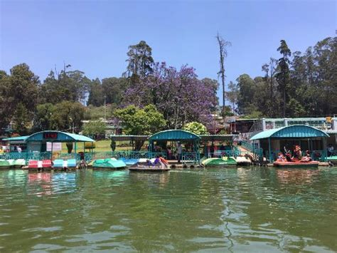 Boat House Ooty ooty boat house picture of ooty lake ooty