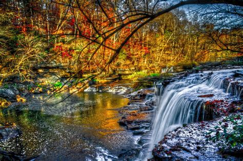 River Shoals Stones Waterfall Forest Tree Yellow Red