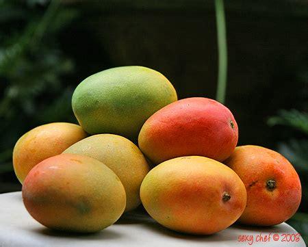 Vitamin C Untuk Hamil Muda Manfaat Buah Mangga Buahku