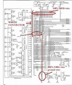 Bmw E39 Engine Diagram Wiring Diagrams Instruction Fair