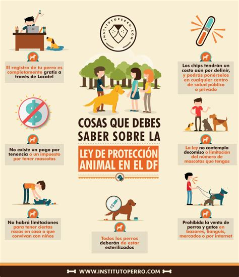ley de proteccion animal df sopitascom